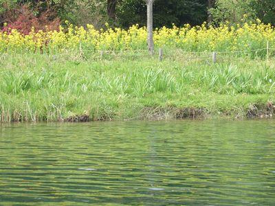 2008_0413環境楽園0136-2.jpg