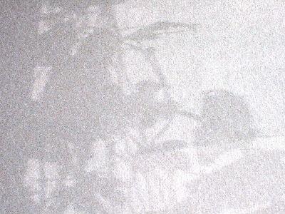 2010_0918鳥000821.JPG